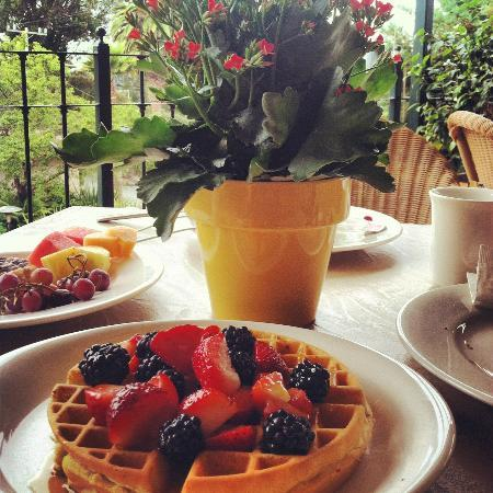 ‪لا بلايا كارمل: Waffles and fruit, delicious breakfast!‬