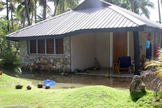 Plantation Island Resort : (Bure 219) By 9am the water had receded but on the left wall can see that had happened before
