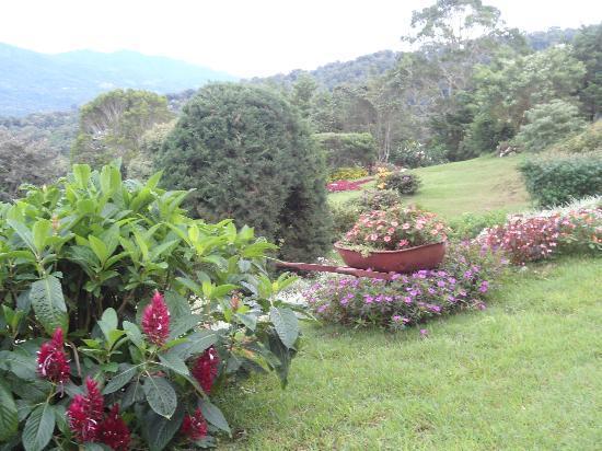 Cabanas El Parador: Nuestro Jardín
