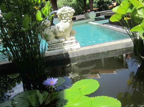 Puripunn Baby Grand Boutique Hotel: Swimming Pool