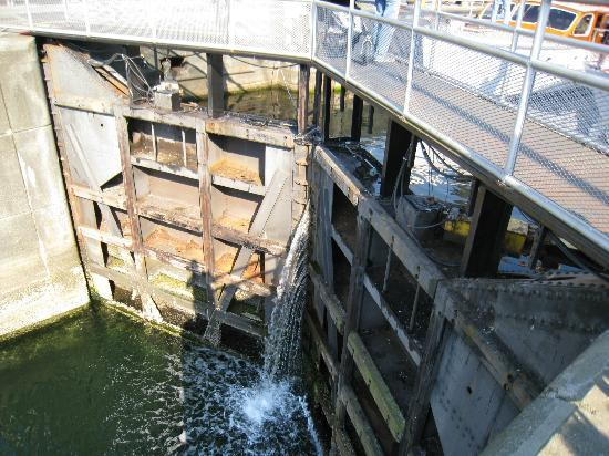 Hiram M. Chittenden Locks: The lower locks of the large boat channel.
