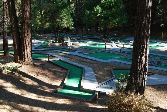 Gold Country Campground and Resort: A very large minature golf area....very clean, too!