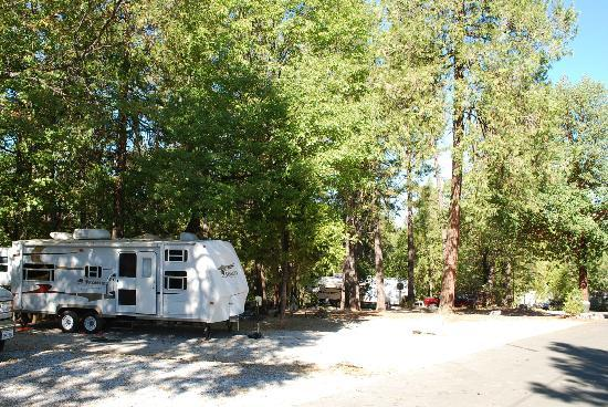 Gold Country Campground and Resort: RV sites