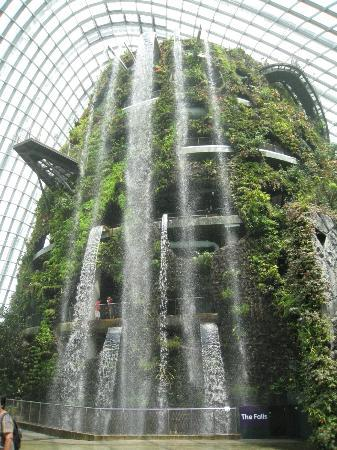 Indoor Waterfalls - Picture of Gardens by the Bay, Singapore ...