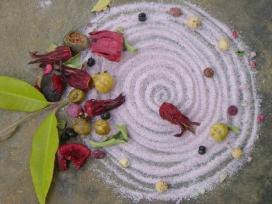 Daintree Wellness Spa: Local and natural ingredients