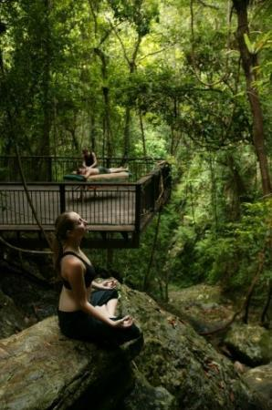 Daintree Wellness Spa: A place to relax and unwind