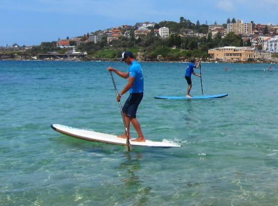 let s go surfing sydney - photo#10