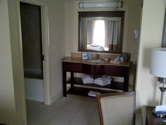 Hampton Inn & Suites by Hilton Saint John: The vanity