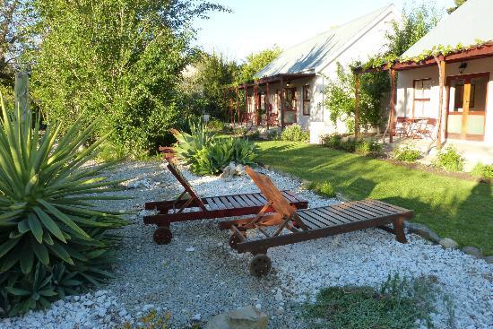 Mimosa Lodge: chaises longues devant les chambres