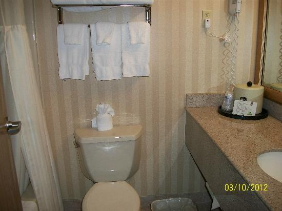 BEST WESTERN PLUS Landmark Inn: Bathroom