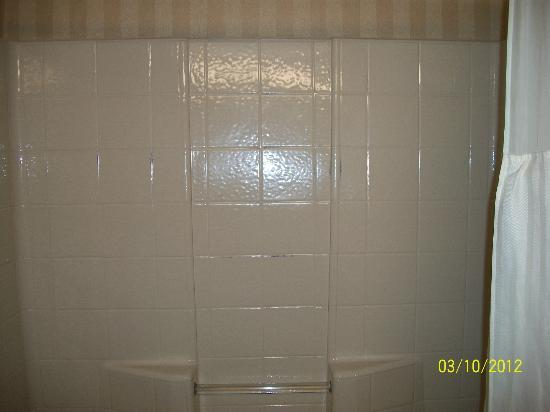 BEST WESTERN PLUS Landmark Inn: Shower