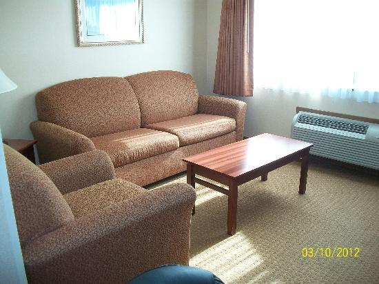 Best Western Plus Landmark Inn: Queen sized fold out sofa