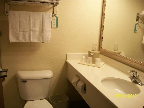 West Wind Inn & Suites: Bathroom vanity