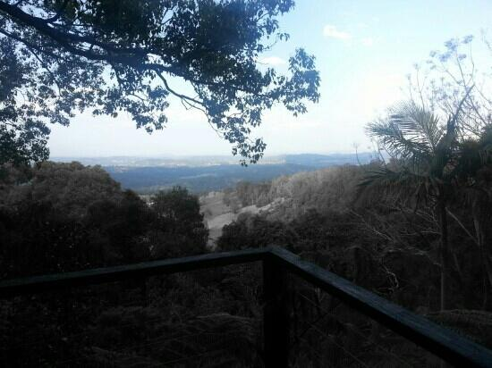 Treetops Seaview: the view from the very private balcony..