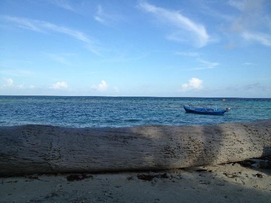 Stingray Beach Inn : Maafushi beach and island