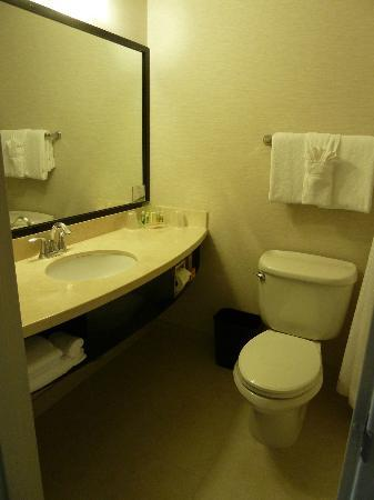 Holiday Inn Civic Center (San Francisco): SdB