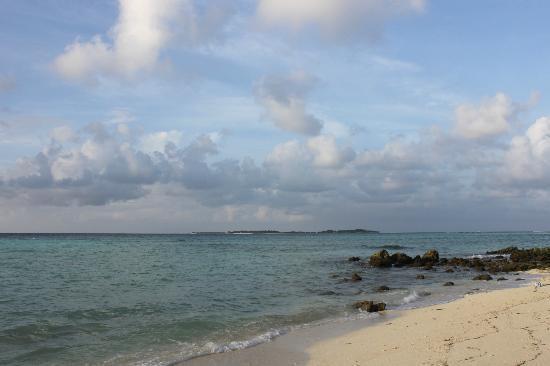 Stingray Beach Inn : Maafushi beach and island