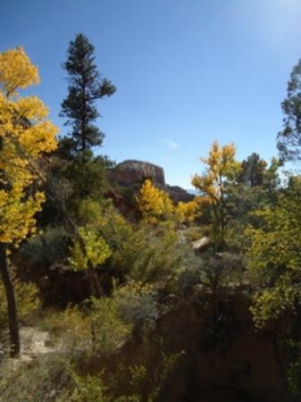 Ghost Ranch: Box Canyon Hike.  October.