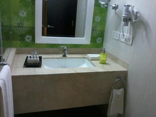 Citrus Goa : Toilet Room Number 209