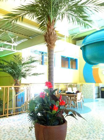 BEST WESTERN PLUS Port O' Call Hotel: Water park