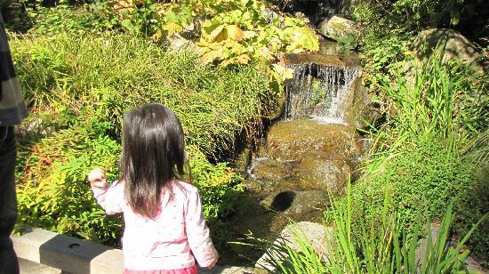 Bellevue Botanical Gardens