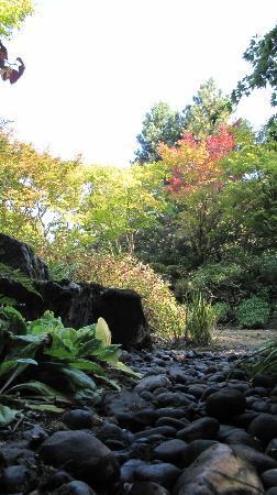 Bellevue Botanical Garden 사진