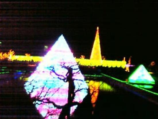 Ashikaga Flower Park: イルミネーション