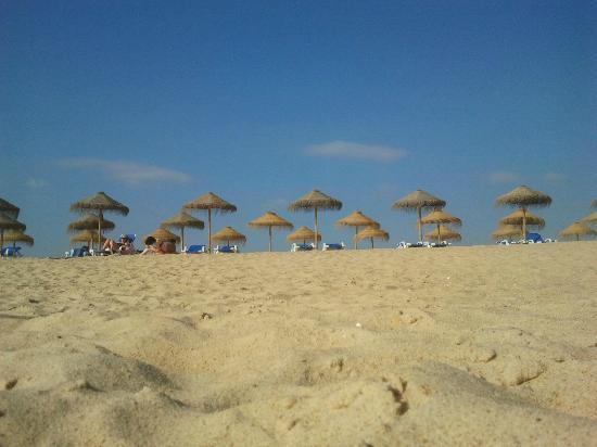 Sao Lourenco Bed and Breakfast: Beach