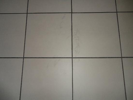 CERISE Strasbourg: Floor