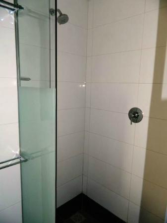 DaVinci Hotel and Suites: Shower