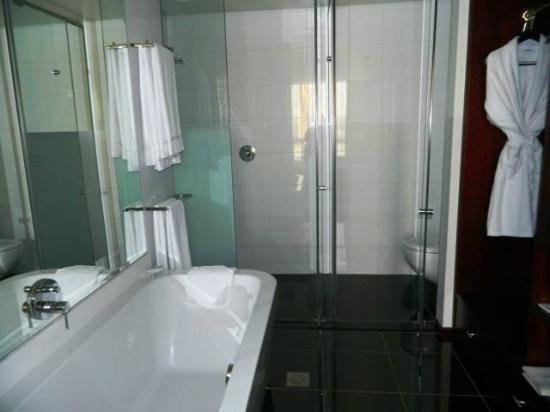 DaVinci Hotel and Suites: Toilet and shower