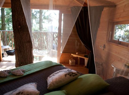 Cabanes als arbres 2018 prices reviews photos sant - Casas en los arboles sant hilari ...