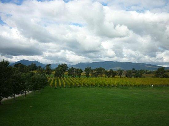 Rochford Wines Yarra Valley: Winery