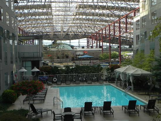 St. Louis Union Station Hotel, Curio Collection by Hilton: La piscina