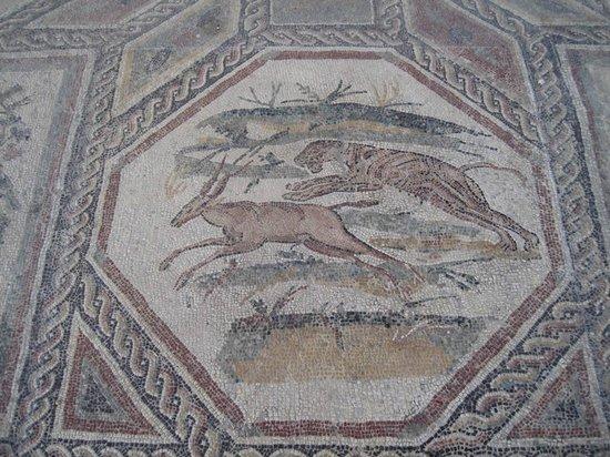 Villa Romana ed Antiquarium di Desenzano del Garda