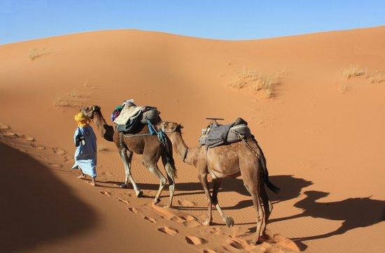 Hotel Ksar Merzouga: Balade dans les dunes