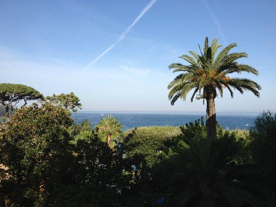 جراند هوتل أمبشاياتوري: view from balcony 621 
