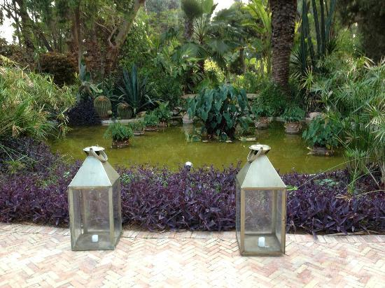 La Gazelle d'Or: Towards one of the water features