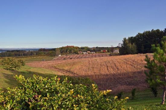 The Inn at Chateau Grand Traverse: The view from the parking lot