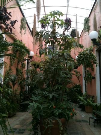 Hotel Villa Romeo: Giardino coperto