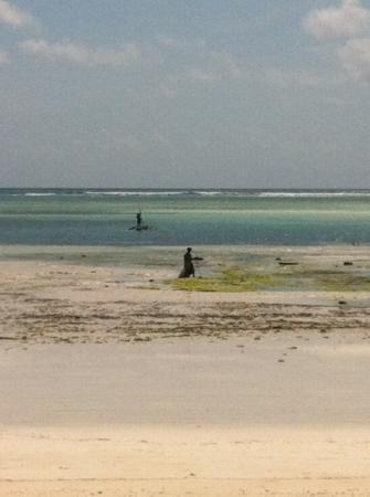 Melia Zanzibar: vue de la terrasse pavillon romance