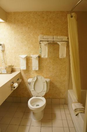 Holiday Inn Express & Suites Lincoln East - White Mountains: Bathroom