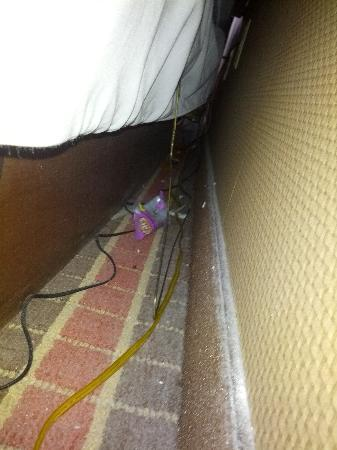 La Quinta Inn & Suites Pittsburgh North - McKnight: Candy wrapper behind the bed. Only found it because the lamps were unplugged.