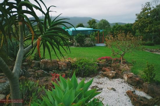 Rocky Road Backpackers: tents set amidst beautiful gardens
