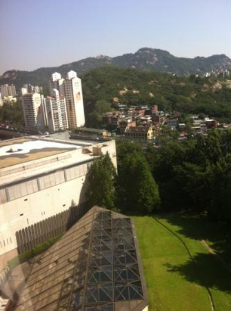 Grand Hilton Seoul : 1238 overlooking the pool roof