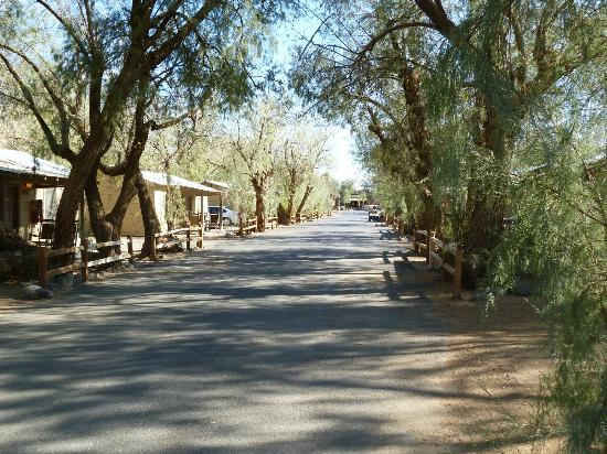Furnace Creek Inn and Ranch Resort: Furnace Creek Ranch