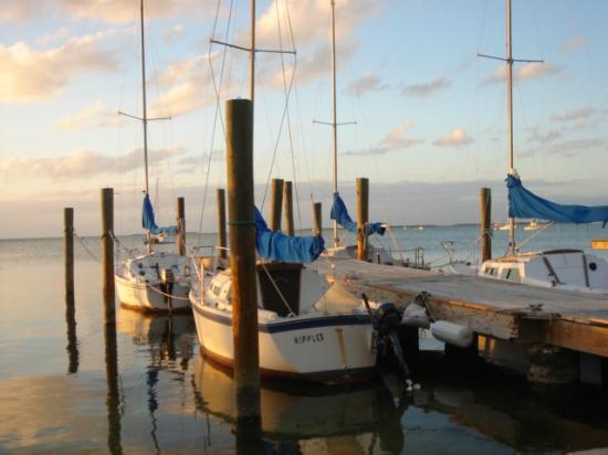 American Sailing Academy: Lear to sail a 22' Catalina sailboat