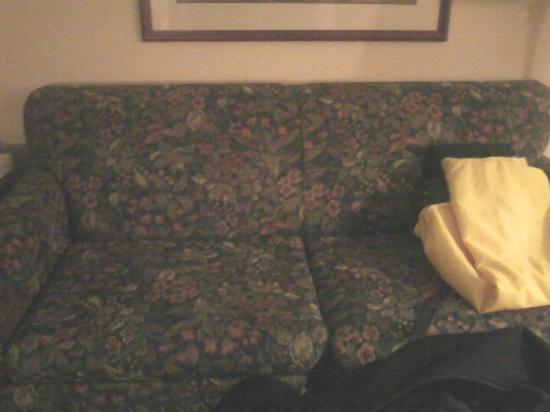 Homewood Suites by Hilton Kansas City Airport : Couch in suite