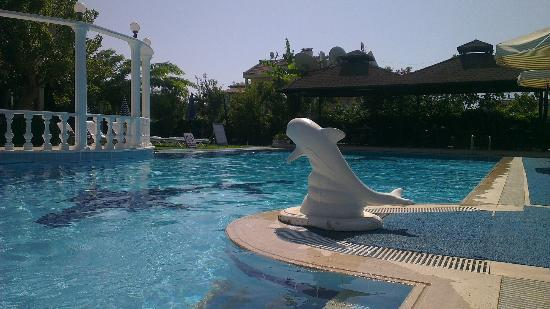 Golden Moon Hotel: Nice pool, although it was like cocoon with the elderly sometimes :-)