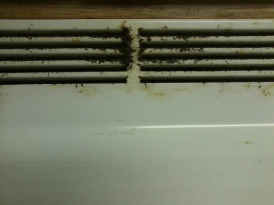 Sea Mist Oceanfront Resort: These dirty vents add bugs to your cooking to make that pinch of extra spice just right